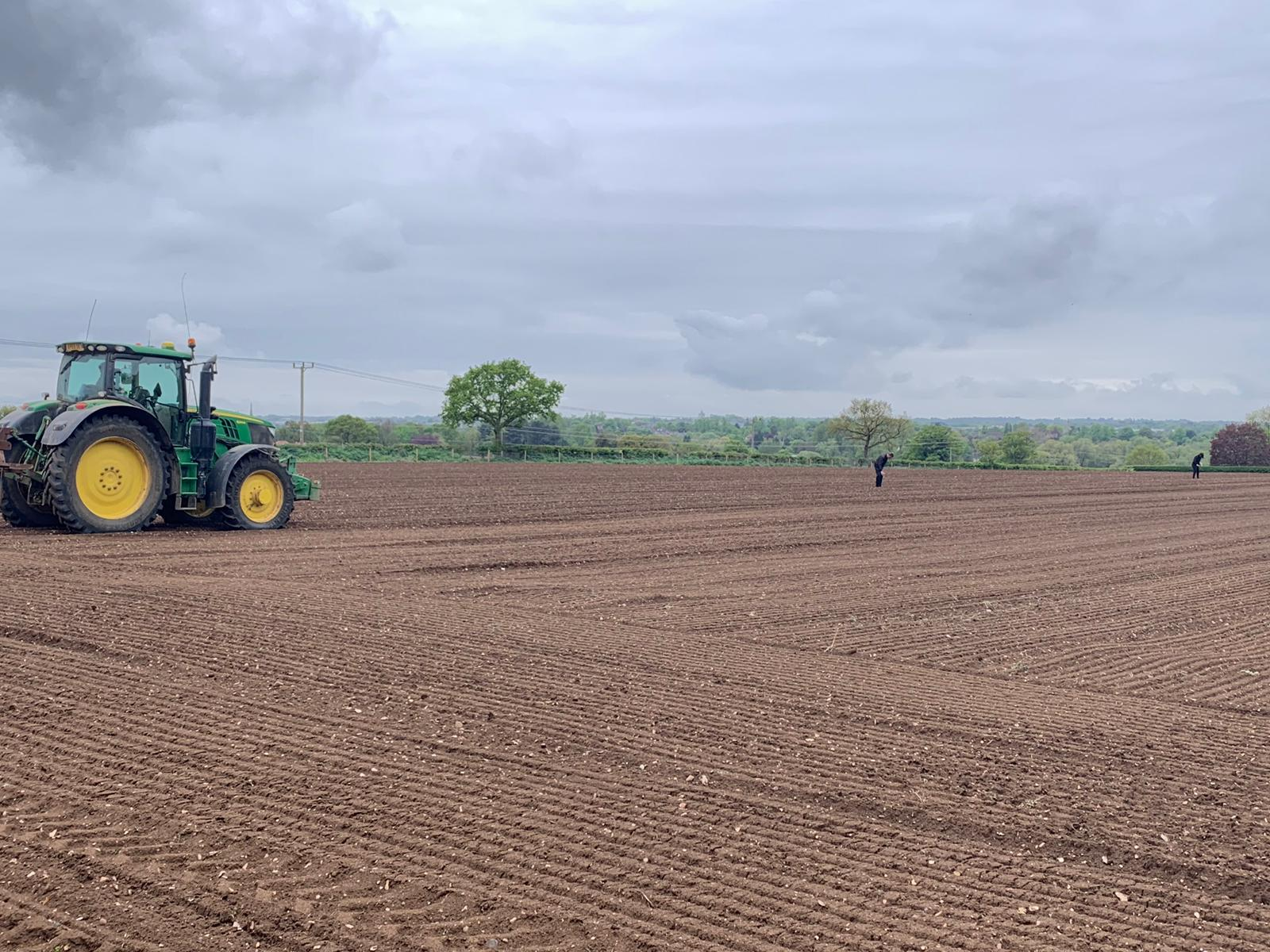 10,000 Seeds Planted for 100% Charity Pumpkin Patch